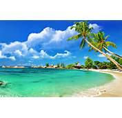 Tropical Beach Wallpapers Wallpaper Hd
