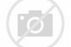 Minggu ini semua pohon bunga sakura di Beijing mulai bermekaran. Taman ...