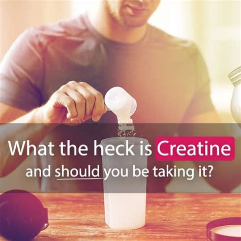 creatine does what what the heck is creatine and should you be taking it