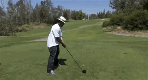 swing gif golf swing gif find on giphy