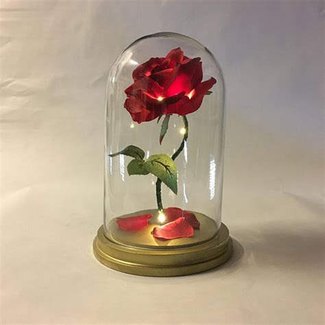 rose in glass beauty and the beast rose enchanted rose rose in glass dome