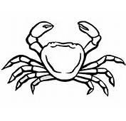Coloriages Crabes Gratuits Animaux &224 Imprimer