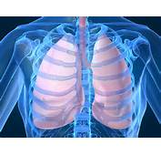 Toronto Integrative Naturopathic Clinic  Healthy Lungs With