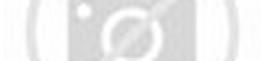 Tolak Peluru (Gaya-gaya, Lapangan Olahraga Tolak Peluru, Teknik Dasar ...