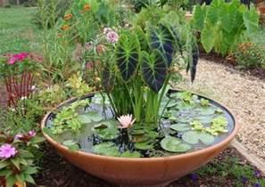 Lotus Pond Ta Miniteich F 252 R Den Balkon 29 Anregungen Zur Gestaltung