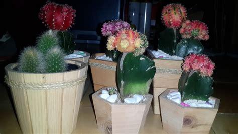 Pot Bunga Pagar Kayu 4 Pis pot bunga dari kayu pot bunga bahan kayu jati belanda