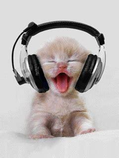 chat casque image  logo anime gratuit pour votre mobile