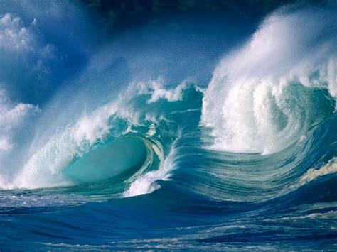 md4jc waves