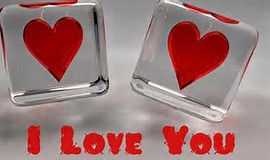 I Love You Day 2015