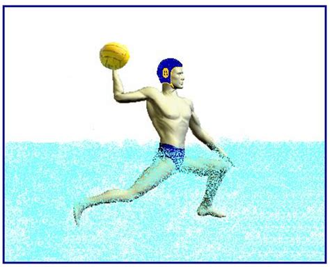 water polo planet index page water polo ball clip art