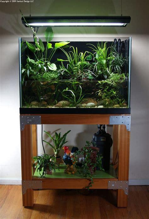 aquarium layout inspiration aquarium inspiration 70 pictures of decorative fish tanks