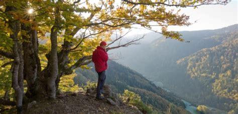 wandlen schwarz gold wandelroutes zwarte woud bekijk tips en informatie anwb