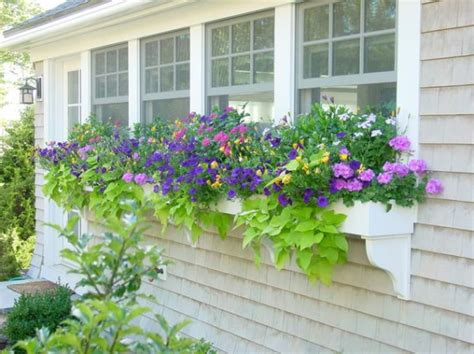 window box flower designs window boxes they really curb appeal