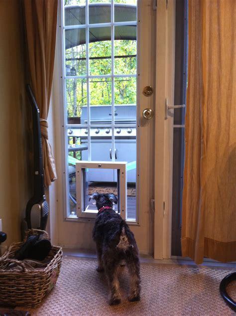 Exterior Door With Pet Door Installed Archives