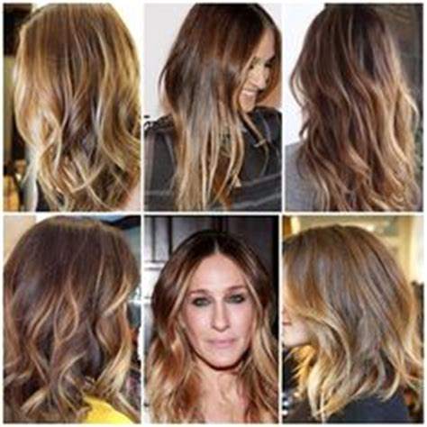 ecaille hair trends for 2015 1000 images about 2015 on pinterest 2015 hair color