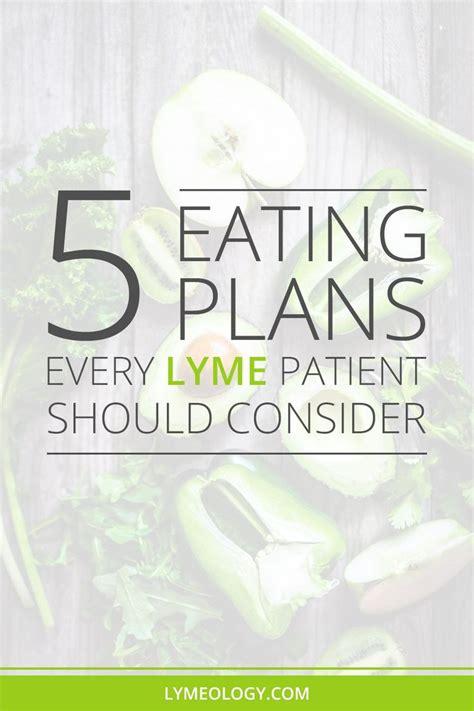 Lyme Disease Detox Diet by Best 25 Lyme Disease Ideas On