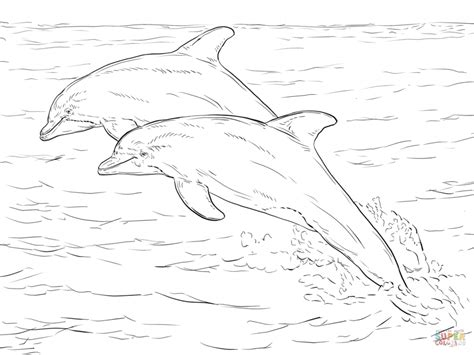 animal coloring pages dolphin get this sea animal coloring pages of dolphin to print 28501