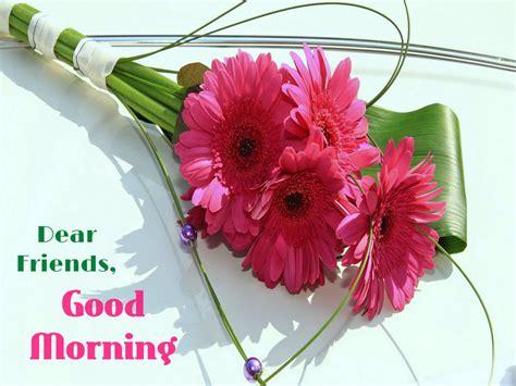 wallpaper flower morning beautiful good morning full size wallpaper download