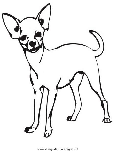 Chihuahua Colouring Pages Free Coloring Pages Of Chihuahua by Chihuahua Colouring Pages