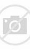 Pakaian Batik Model Kebaya Baju Kurung Melayu