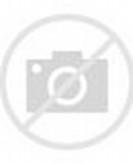 Adornos De Fieltro Navidad