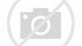 FC Bayern Munich 2013