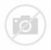 Rak Buku Minimalis Indo Furniture