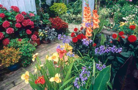 Small Container Garden Ideas Small Backyard Landscaping Ideas Container Garden Backyard