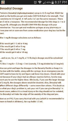 liquid benadryl for dogs dogs fur babies tips on pet sitting your and for dogs