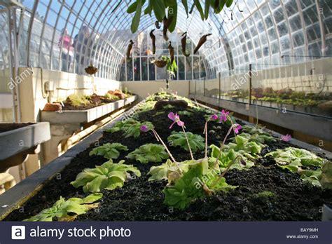 Jardin Botanical Jardin Botanico Spain S Botanical Garden Glass