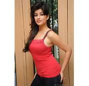 All Actress Glamour Photos South Indean Actresses Hot And Bold