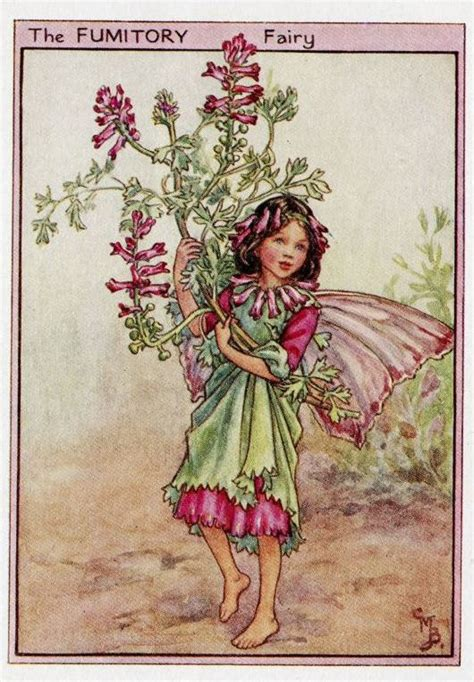 imagenes hadas vintage fumitory flower fairy vintage print c1950 cicely by