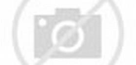 Tennis Court Layout