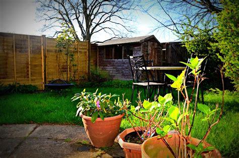 backyard sounds backyard birds banbury england 171 the touch of sound