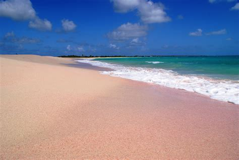Beaches With Pink Sand Pink Sand Beach Barbuda Omg Pink Sand Oh The Places