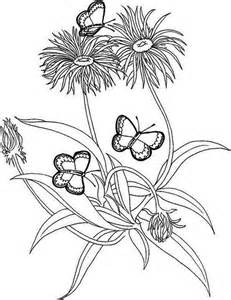 Rainforest plants and flowers coloring pages this coloring sheet