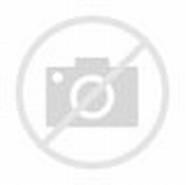 Gitar Gambar Alat Musik