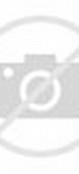 Gambar Berbagai Bentuk Bulu Kemaluan Wanita | Loverlem blog