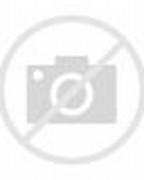 Chrysanthemum Coloring Page Flowers