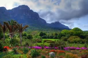 Kirstenbosch National Botanical Gardens Kirstenbosch National Botanical Garden Cape Town Flickr