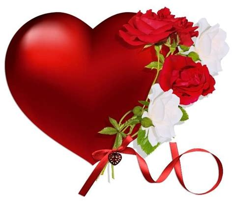 pictures of hearts and roses a with and white roses a symbol of