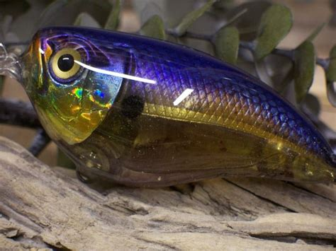 Handmade Crankbaits - 3180 best images about fishing lures baits on