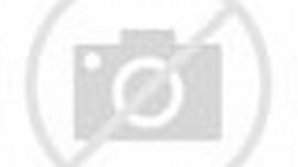 Naruto Hokage vs Sasuke