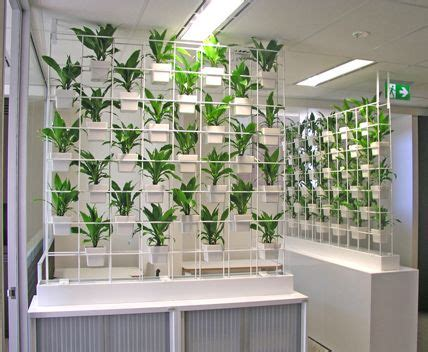 partition plantersindoor partition planters