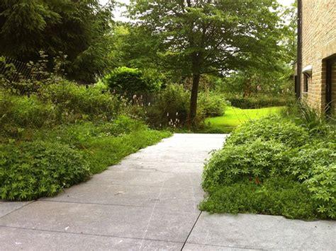 buro groen buro buiten priv 233 tuin dilbeek belgian blue