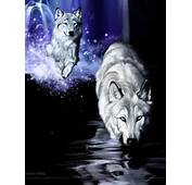 White Wolf Fantasy  Wolves Photo 9128653 Fanpop