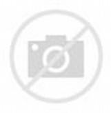 What Does Kikuyu Grass Look Like