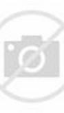 Great Escape Movie