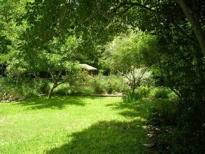 backyard view 3700 grayson french place wilshire woods area mueller