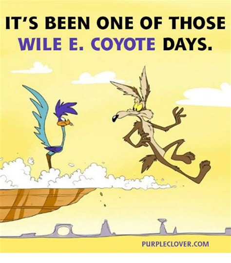 Wile E Coyote Meme - funnies picture thread what you found nsfw r rated